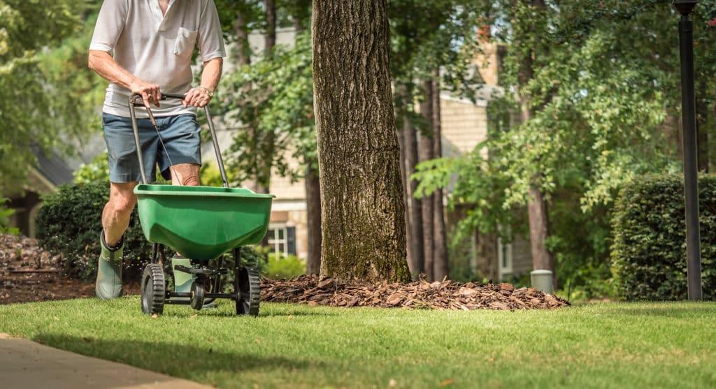 Repair Dead Grass and Repair Lawn